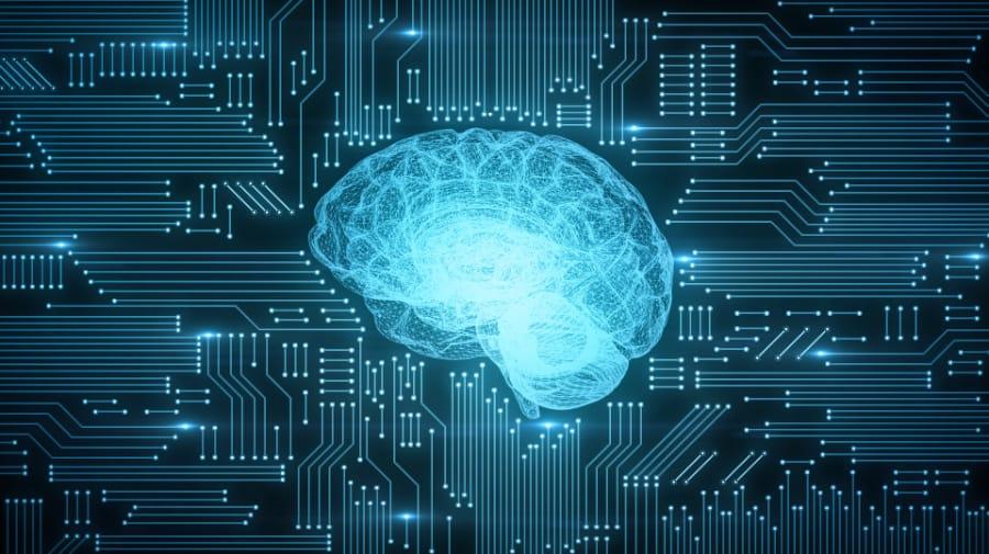 Brain Frequencies